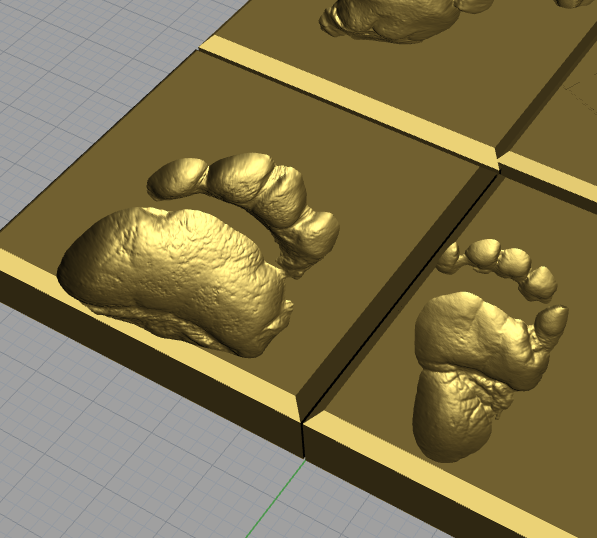 Black Bear Track test scan surfaces ready to print, adult front paw (left) Juvenile hindfoot(right)