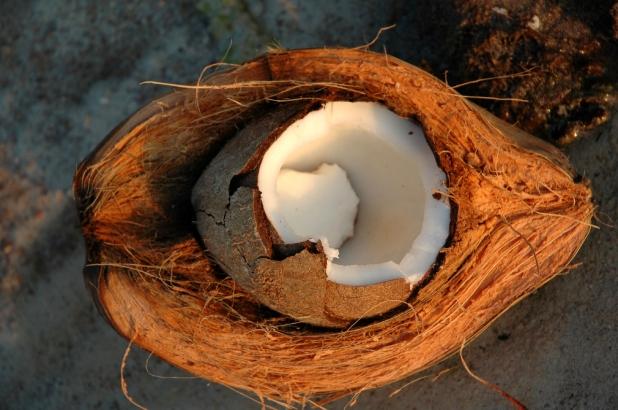 coconut-fibre.jpg