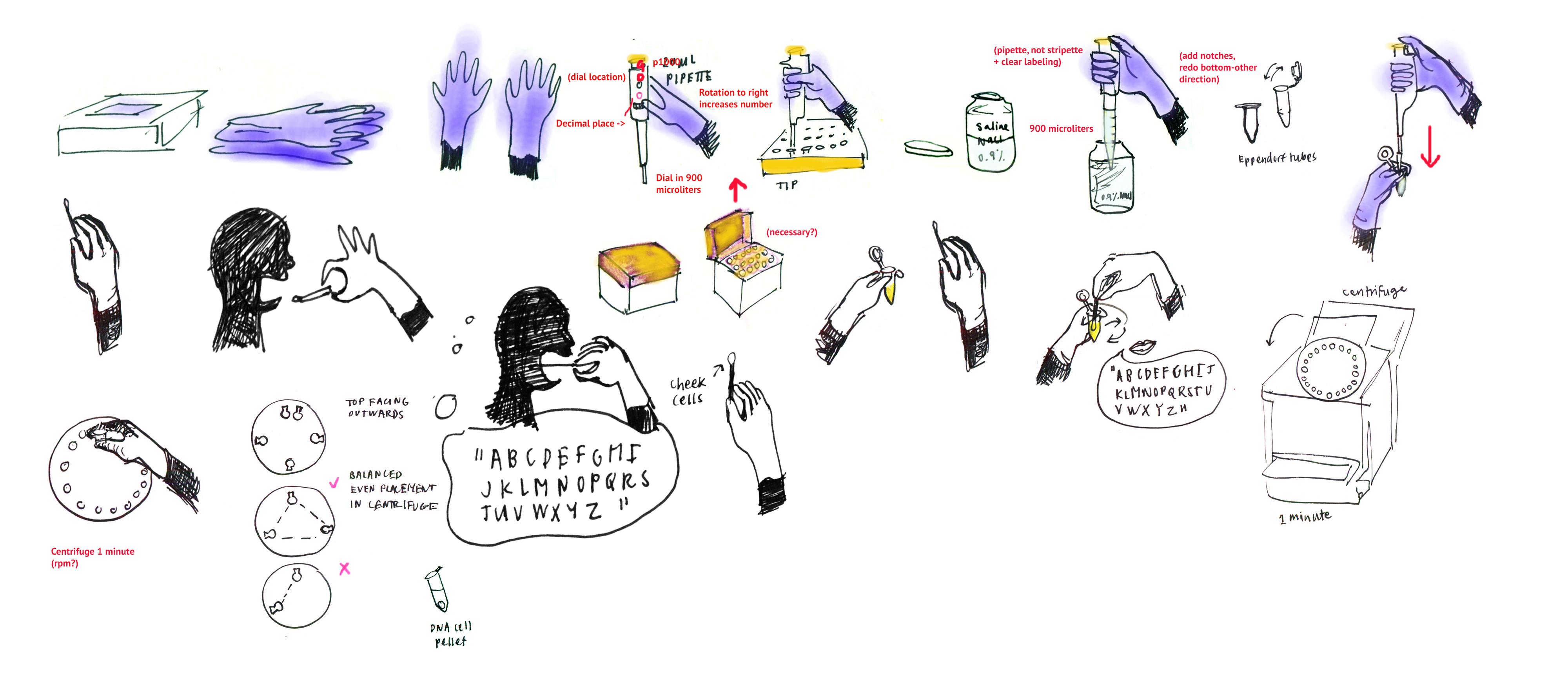 DNA Isolation Draft
